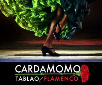 Cardamomo Flamenco