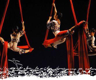 CASCANUECES - Ballet Acrobático Dalian de China