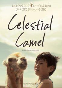 Cartel de la película Celestial Camel