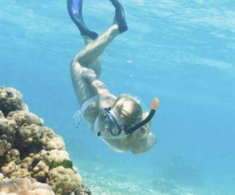 Eco-Snorkel en las Islas Medas