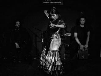 Espectaculo Flamenco Sábados Flamenco el Lucero